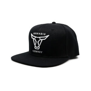 Skater Hat Full Logo